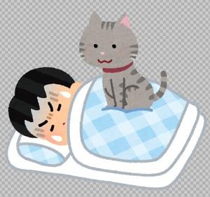 猫のじゃま.jpg