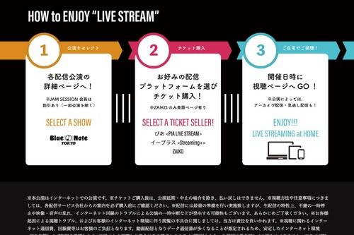 LiveStreaming-2.jpg